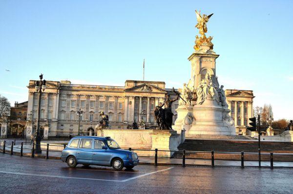 Букингемский дворец — официальная лондонская резиденция британских монархов. Когда монарх находится во дворце, над крышей дворца развевается королевский штандарт. Действующий монарх: Елизавета II.