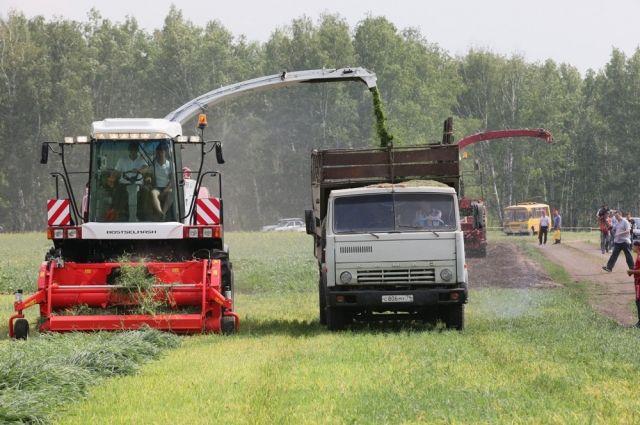 Рост засеянных площадей - хороший задел на урожай.