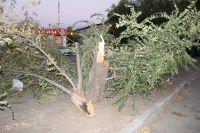 Ураган обрушился на город 13 июля.