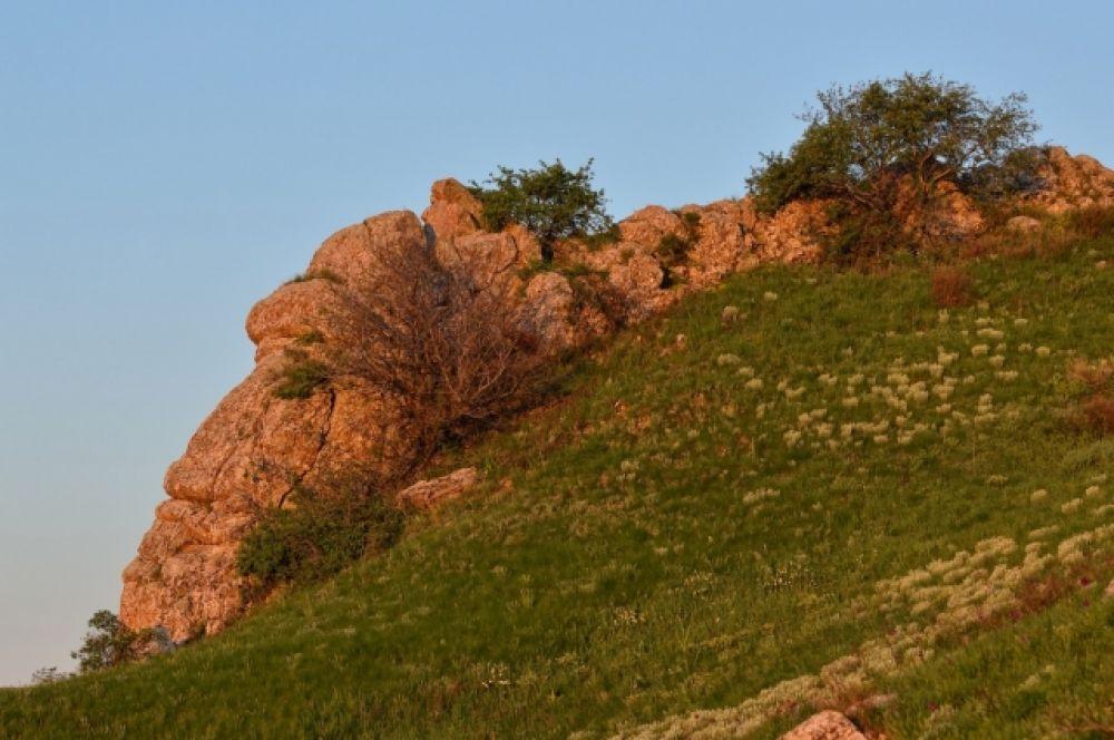 Эти камни напоминали голову павшего богатыря.