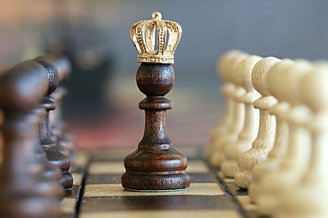 Далеко не все талантливые шахматисты смогут пробиться наверх и сделать себе имя в большом спорте, но спортивные навыки очень пригодятся в жизни.