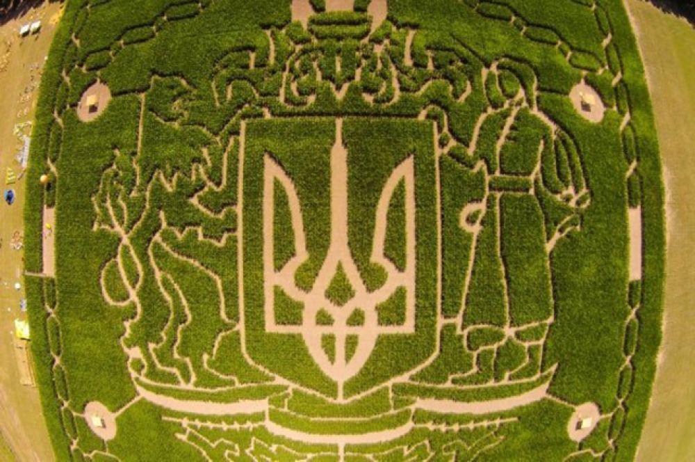 Это самый большой в Украине лабиринт с площадью в 40000 квадратных метров