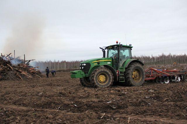 Сельхозугодья зарастают сорняками и превращаются в свалку.