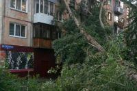 В результате урагана травмы получили шесть человек.