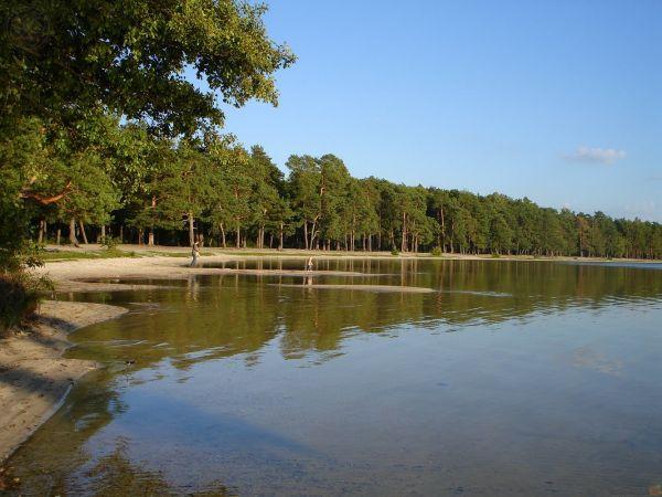 Узкие пляжные полосы у Белого озера в Ровенской области