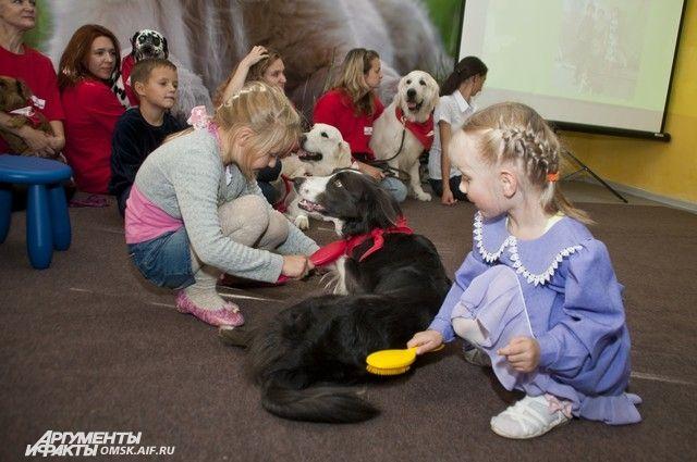 Неизвестные решили отравить животных, которые помогают в реабилитации детям.