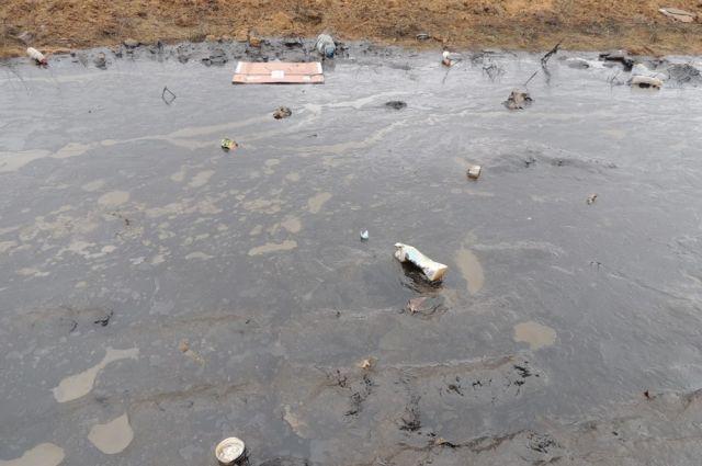 Разлив нефтепродукты может быть очень опасен для окружающей среды.