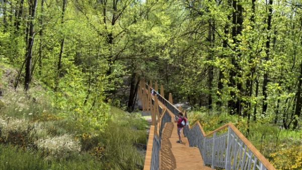 Пешеходный мост по лесу.