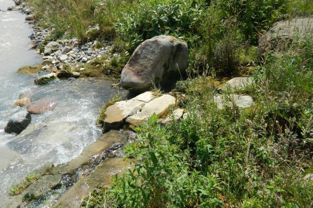 В Думановских источниках - чистейшая вода.