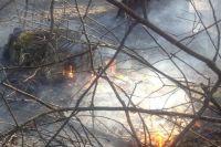 В зону задымления от пожаров в крае попали ещё 12 субъектов России