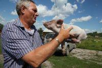 Фермер готов поделиться с общиной всем, что нажил.