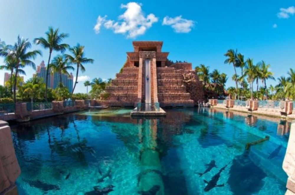 Leap of Faith - 30-метровая горка, которая находится на Багамах и проложена через бассейн с акулами