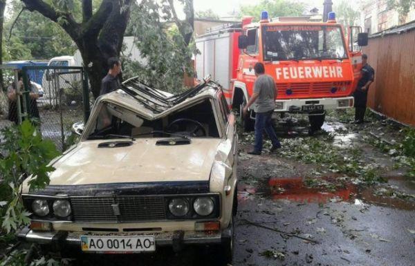 Деревья падали по всему городу и видно, какой колоссальный урон они нанесли