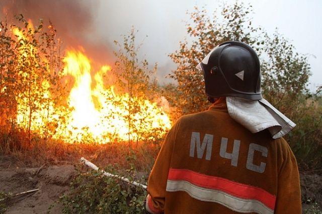Огонь не угрожает ни одному населённому пункту.