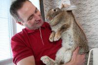 Юрий Шандула уверен, что кроличье молоко можно использовать в косметологии: оно даёт прекрасный омолаживающий эффект.
