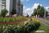 Деревьев в Омске меньше и меньше, а клумбы появляются практически на каждом шагу.