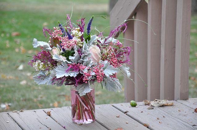 Сезонные цветы август