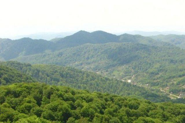 Ботанический заказник Холмовецька гора