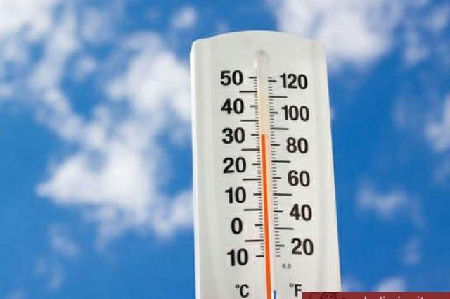 12:09019В Липецкую область к выходным возвращается жараТемпература воздуха прогреется до 31 градуса