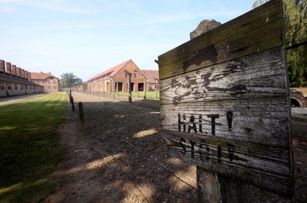 С 1947 года в бараках бывшего концлагеря оборудован музей.