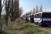 Автобусы в очереди на блокпосту