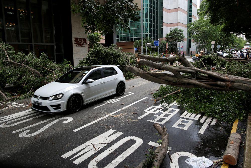Тайфун вырывал с корнем деревья и валил рекламные щиты.