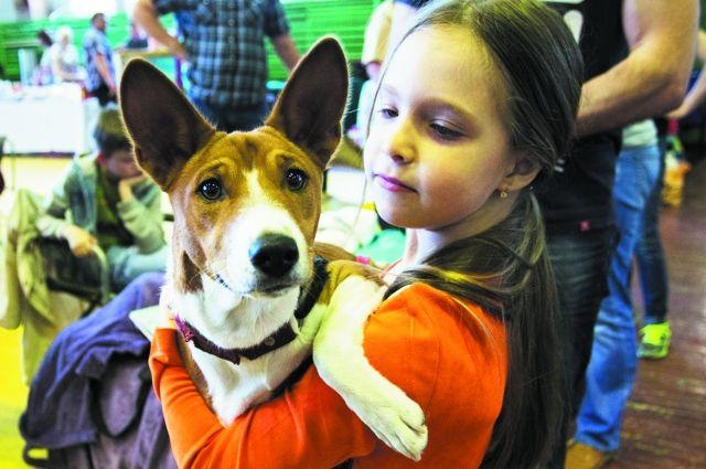 Гуманное отношение к животным надо прививать с детства.