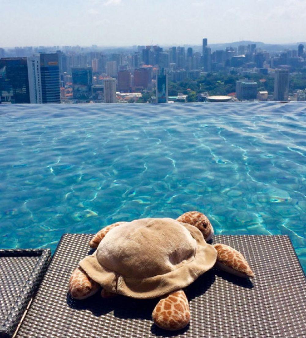 Один из самых популярных бассейнов мира на крыше 57-этажного здания в Сингапуре. Захватывающий вид!
