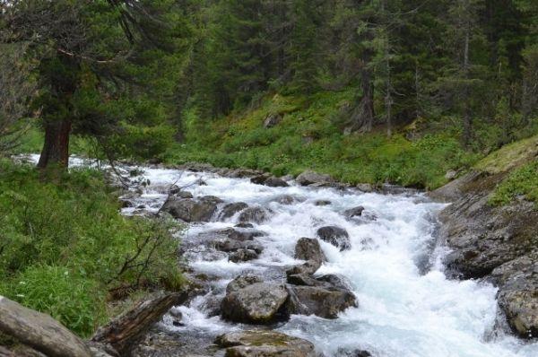Здесь много горных рек и ручьёв.