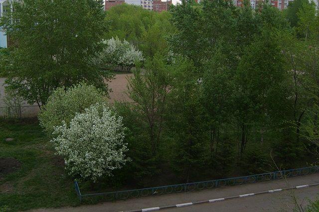 ВПензе наулице Лермонтова появятся 80 новых парковочных мест