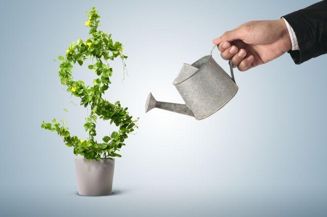 Кабинет попривлечению вложений денег планируют открыть до1сентября,— В. Гройсман