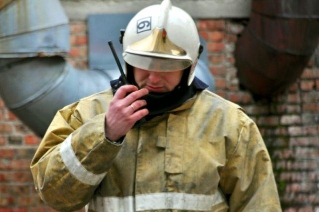 ВОмске при возгорании цистерны смаслом погибла служебная собачка