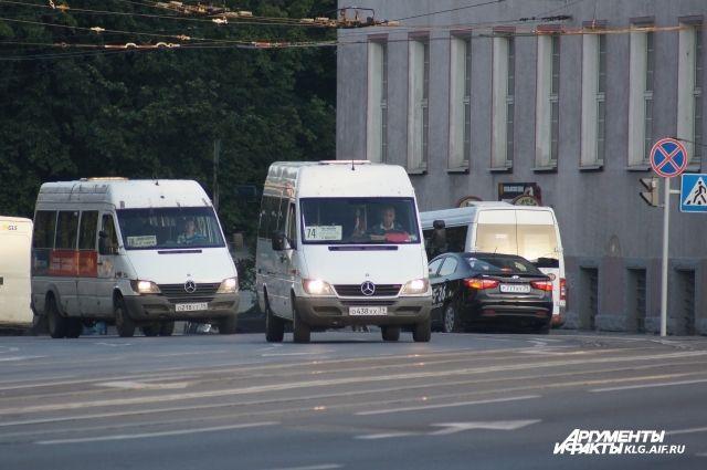 Власти не хотят увеличивать количество маршруток вКалининграде