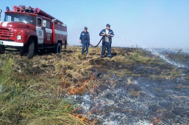 Под Киевом горит около 1,5 гектара торфа