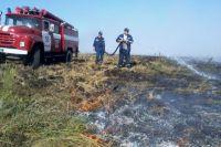 Пожарные тушат огонь на торфянике