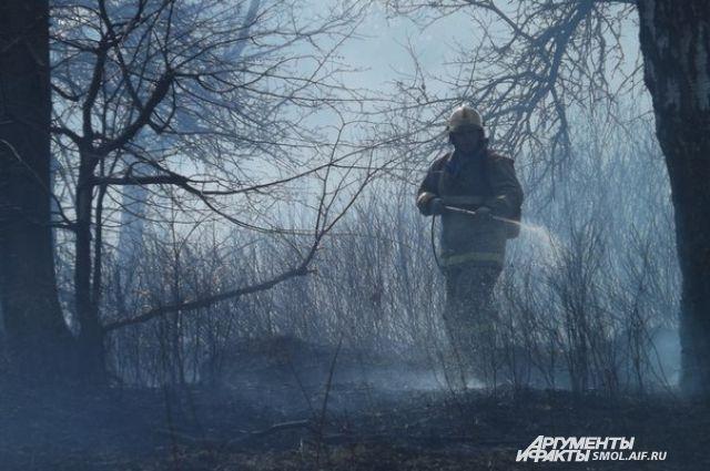 Площадь пожара наторфяниках вВологодском районе сократилась до 2-х гектаров