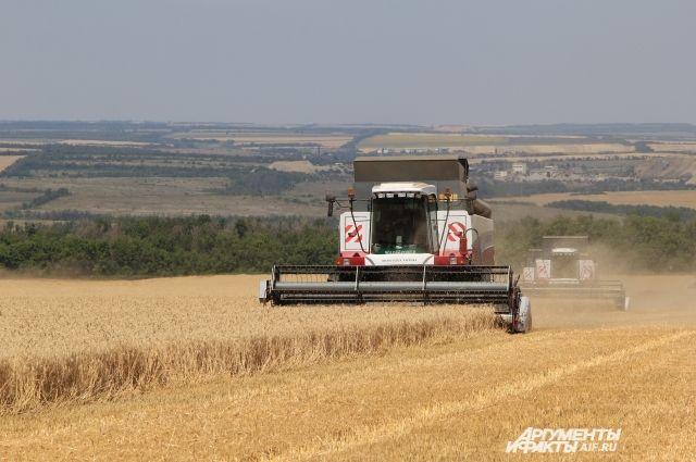 Министр сельского хозяйства Иркутской области: Врегионе начата уборка зерновых