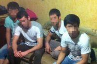Задержанные члены ИГИЛ