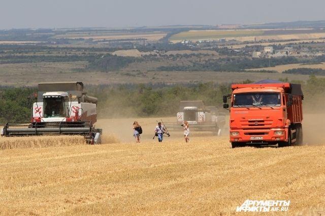 Уборка зерновых в хозяйстве прошла  в штатном режиме – без авралов, аварий и особых задержек.