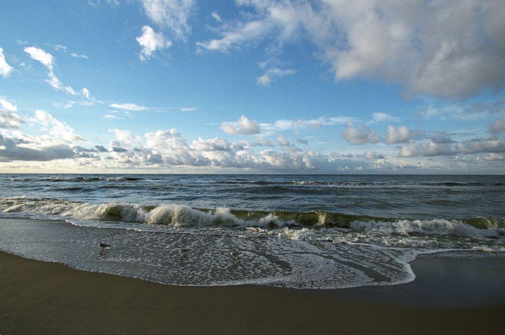7. Куршская коса, Калининградская область. Длинная песчаная полоса суши, отделяющая Куршский залив от Балтийского моря. Включена в список Всемирного наследия ЮНЕСКО.