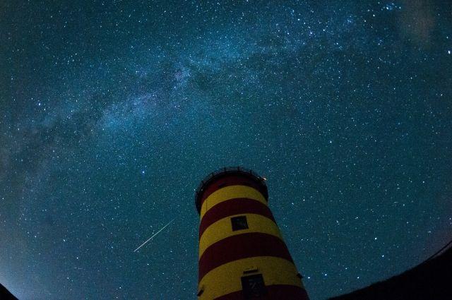 Сегодня ночью граждане Карелии смогут наблюдать мощный звездопад года