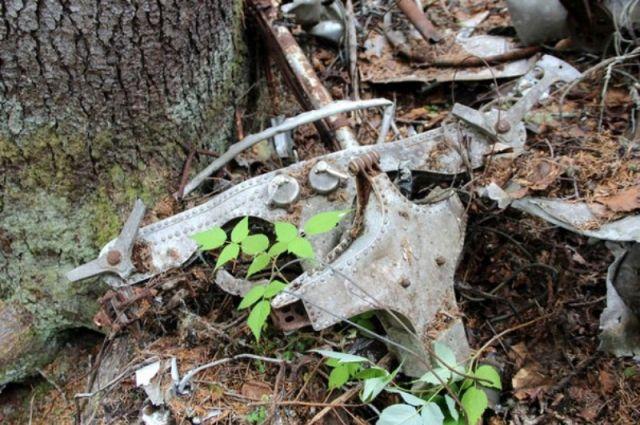 ВПриморье найдены останки пассажиров рейса, потерпевшего крушение в 1935г