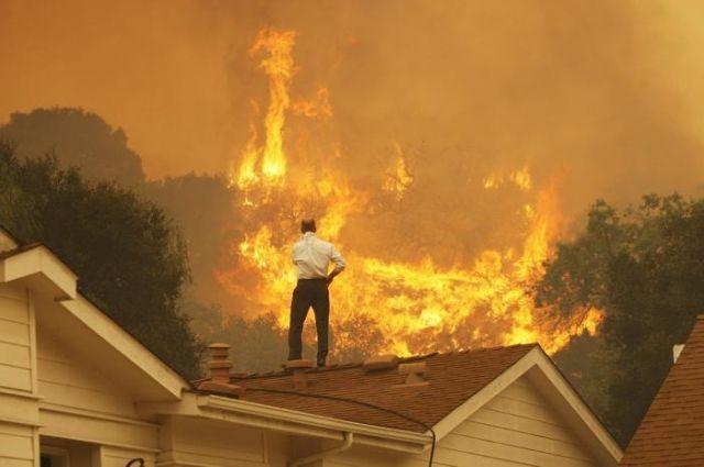Лесные пожары вКалифорнии охватили 6000 гектаров за12 часов