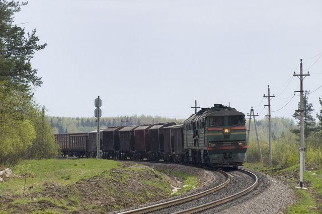 Грузовой поезд сошел срельсов вБрянской области