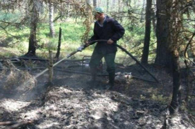 Торфяной пожар вГордеевском районе тушили 3,5 часа