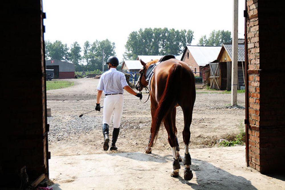 Соревнования по выездке закончились и на поле выходят спортсмены в конкуре.