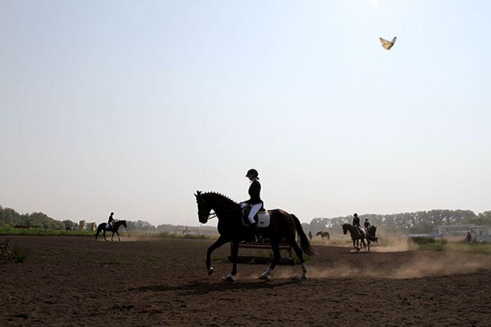 Пока одни спортсмены выступают, другие разминаются. В этот момент они собраны и лучше не тревожить ни лошадь, ни наездника.