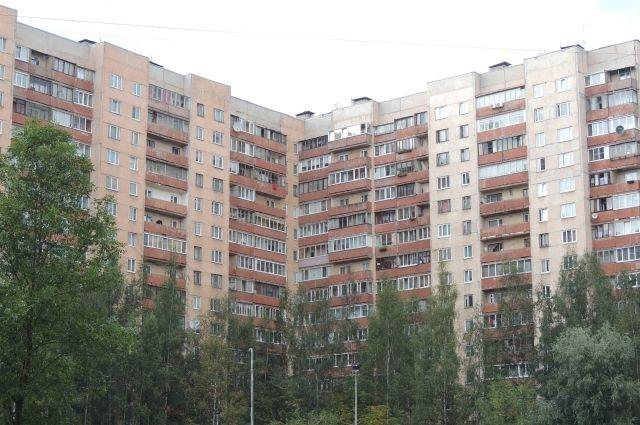 Впроцессе специализированной операции вПетербурге убит боевик иранен работник спецназа ФСБ