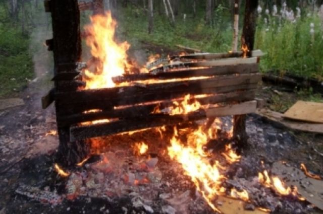 ВПриангарье двое детей сгорели заживо, играя вшалаше влесу