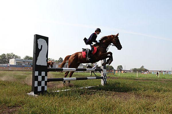 Удержать на месте темпераментных коней наезднику не просто. Но брать барьеры нужно аккуратно, чтобы не сбить их.